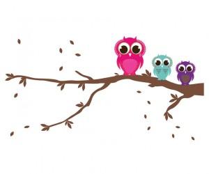 cropped-owls1.jpg
